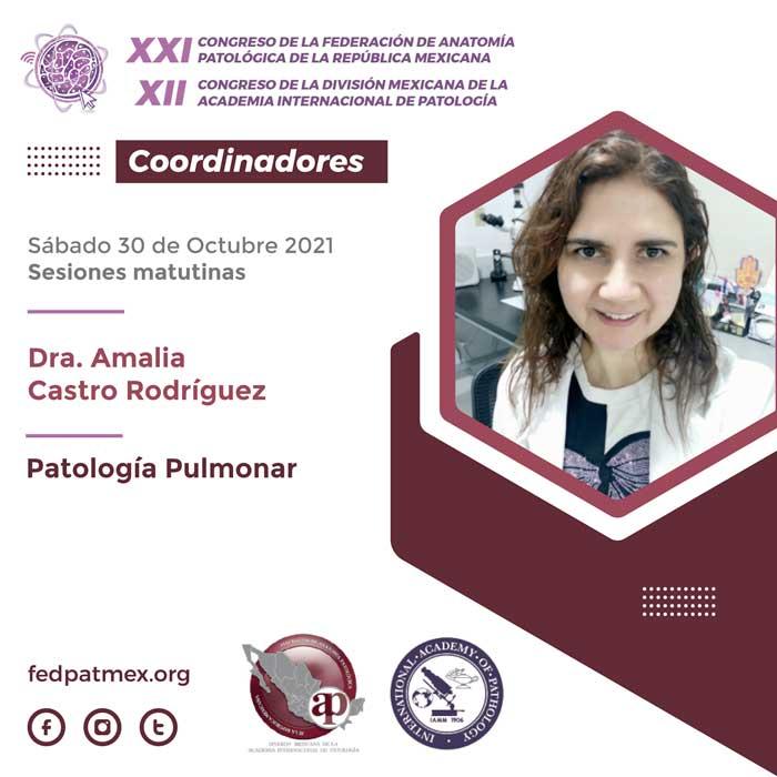 coordinadores_congreso_fedpatmex-16