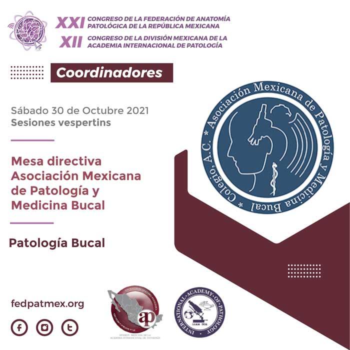 coordinadores_congreso_fedpatmex-20